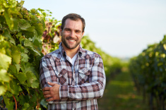 stock-photo-76946995-winemaker-in-vineyard
